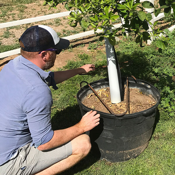 Nursery Application For The GTI Stake – Protects Container Tree Inventory