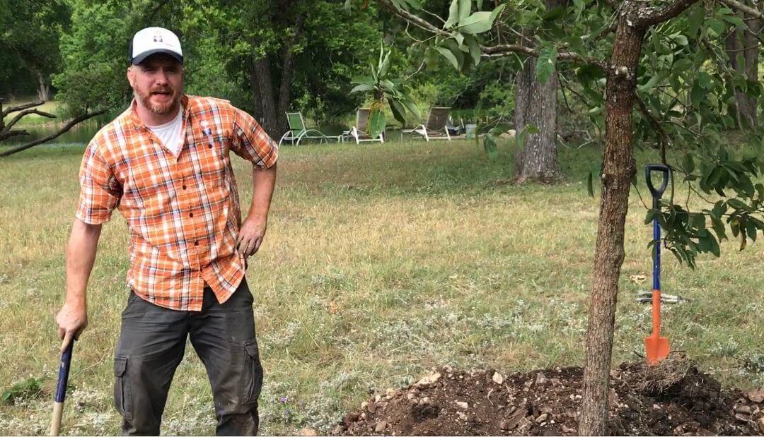 GTI Tree Stakes on HUGE Monterrey Oaks